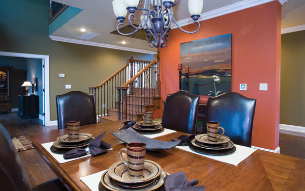 bold wall in dining room