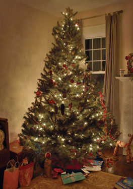 Christmas tree featured in a beautiful room of a newly built house plan