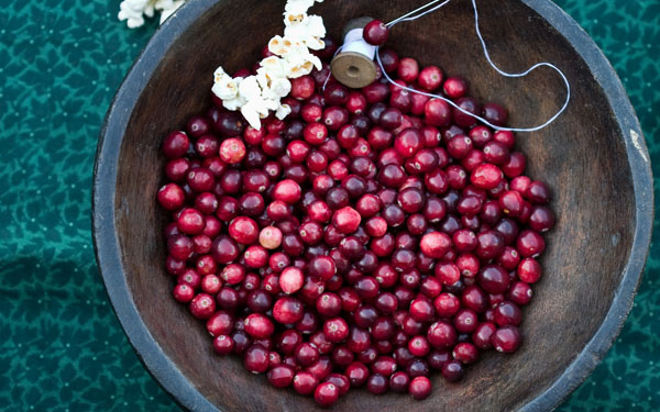 cranberry Christmas tree garland