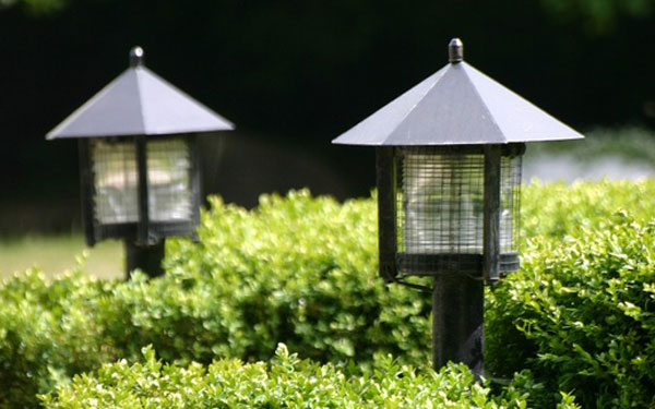 great garden lights