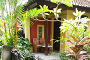 tropical garden and patio thumbnail