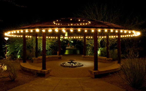 beautiful garden at night with lights