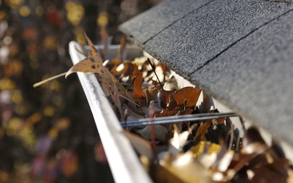 house gutter full of leaves ready to be cleaned