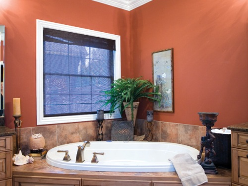 Luxury Bathroom Colors