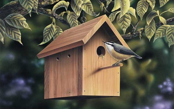 Chickadee house design home design and style for Bird house styles