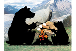 Bears roasting marshmallows is a rustic and fun pattern to add to a wilderness setting