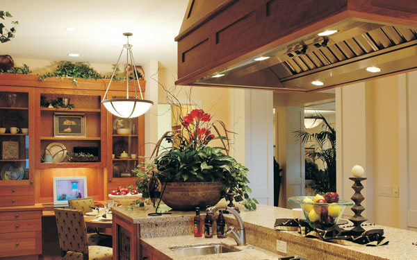 luxury kitchen with house plants