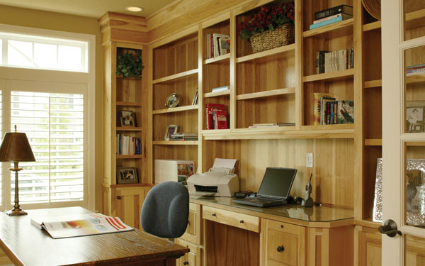 bookcases in a home office